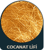 coconat-lifi